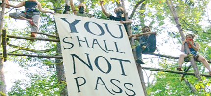 Eight people have climbed trees in Texas to stop the Keystone XL Pipeline. 'We are defending our homes, our communities clean drinking water, our land rights, and a stable, livable climate.' (photo: Tar Sands Blockade)