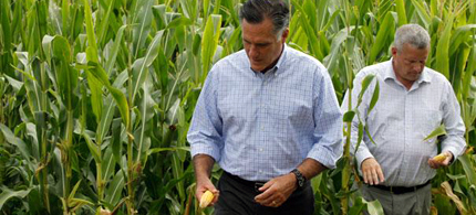 Mitt Romney looks at an ear of corn in Iowa. (photo: AP)