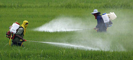 Monsanto's Roundup has been linked to Parkinson's disease. (photo: Pesticide Action Network)