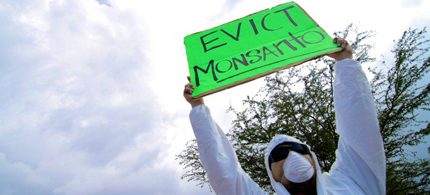 An activist protesting Monsanto. (photo: GMO-Free Maui)